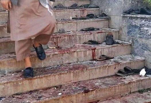 شیعه کشی و تاوان جرم های سیاسی معکوس!